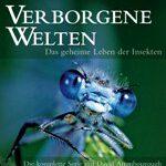 Verborgene Welten: Das geheime Leben der Insekten