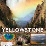 Yellowstone – Legendäre Wildnis