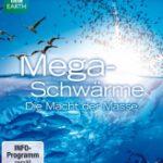 Mega-Schwärme – Die Macht der Masse
