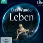 Life – Das Wunder Leben