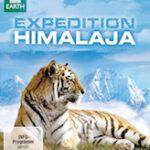 Expedition Himalaja – Auf der Fährte der Tiger im Königreich Bhutan