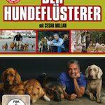 Der Hundeflüsterer Vol. 1