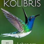 Kolibris – Leben am Limit